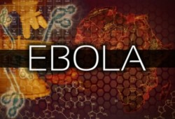 4 Facts About Ebola They Aren't Telling You