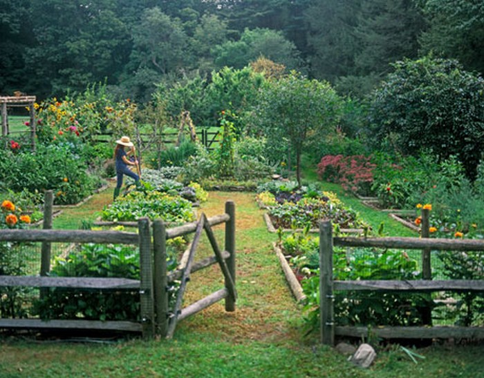 Vegetable garden makes me want a fence for Attractive vegetable garden fence