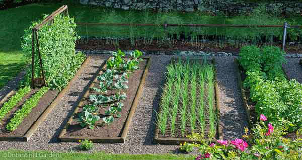 Beautiful raised bed vegetable garden clattr for Beautiful raised gardens