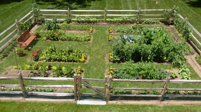Gorgeous fenced vegetable garden for Beautiful vegetable garden designs