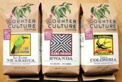 Top 10 Organic Coffee Brands on Earth