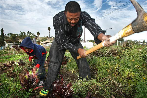 San Diego Wants to Turn Vacant Lots Into Gardens