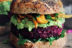 Easy Vegan Recipes All of Us Should Know