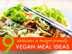 9 Budget Friendly Vegan Meal Ideas with Recipes
