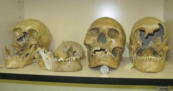 Smithsonian Admits to Destroying Proof of Giants