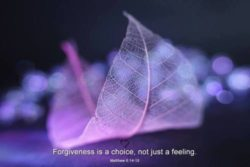 Forgiveness is a choice, not just a feeling