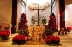 St. Maria Goretti Church Christmas Decorations