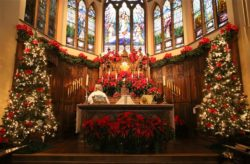 Church Altar Decorated Beautifully for the Christmas Season