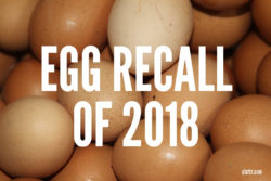 Egg Recall 2018: List of Brands Recalled